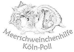 Meerschweinchenhilfe Köln-Poll