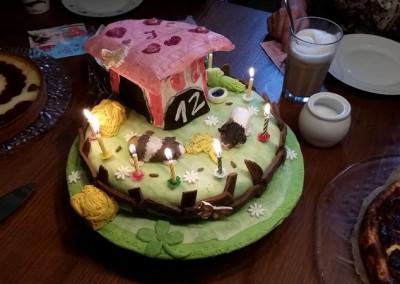 Die Meeris von Familie Lück aus Köln werden sogar auf der Geburtstagstorte verewigt