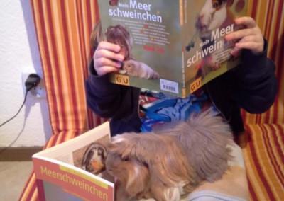 Die glückliche Besitzerin von Peppino bildet sich direkt zusammen mit dem Schwein weiter